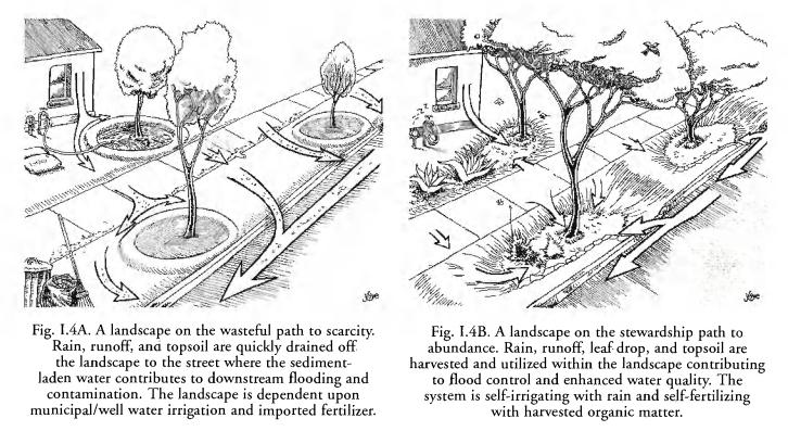 note_pics/Rainwater-Harvesting-for-Drylands-Vol-1/fig-i.4AB-Runoff-v-Infiltration-lawn.JPG